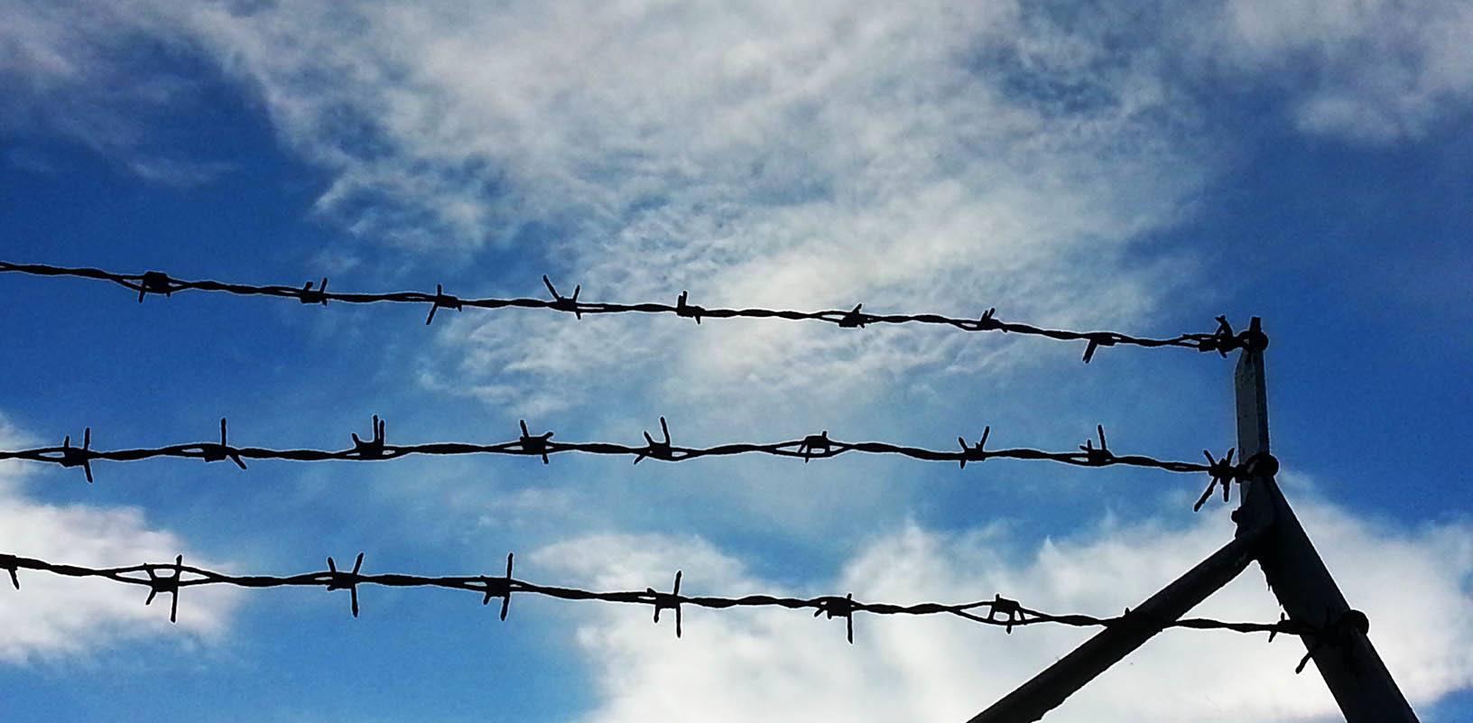 pigtråd, barbed wire, amnesty international, June Beltoft singer-songwriter and musician